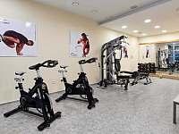 Z apartmánů je kousek do fitness centra v hotelu Říčky. -