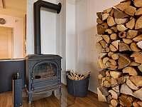 Horský apartmán U Lesa - pronájem apartmánu - 12 Říčky v Orlických horách