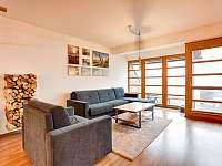 Horský apartmán U Lesa - apartmán k pronájmu - 6 Říčky v Orlických horách