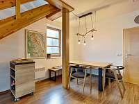 Horský apartmán U Lesa - apartmán k pronajmutí - 8 Říčky v Orlických horách