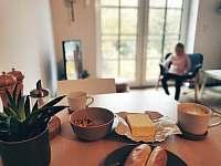 Apartmán v podkroví - k pronajmutí Říčky v Orlických horách