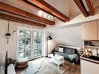 ubytování Rokytnice v Orlických horách v apartmánu na horách