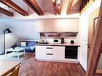 Apartmán v podkroví - plně vybavená kuchyně - ubytování Říčky v Orlických horách