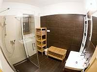 Koupelna - apartmán k pronájmu Velká Morava