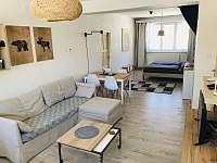 Apartmán k pronajmutí - pronájem apartmánu - 7 Orlické Záhoří