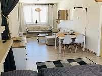 Apartmán k pronajmutí - apartmán k pronajmutí - 4 Orlické Záhoří
