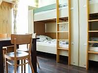 Apartmány U Aloise - apartmán k pronájmu - 6 Dolní Morava