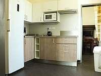 Apartmány U Aloise - apartmán k pronájmu - 22 Dolní Morava
