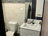 Záchod se sprchovým koutem - apartmán ubytování Jizbice u Náchoda