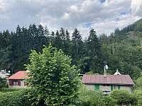Kašparovic chata - chata k pronajmutí - 30 Litice nad Orlicí