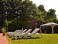 zahrada s lehátky - apartmán k pronajmutí Horní Třešňovec