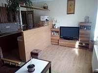 Ubytování u lesa - apartmán ubytování Dolní Orlice - 5