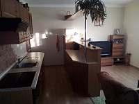 Ubytování u lesa - apartmán k pronajmutí - 8 Dolní Orlice