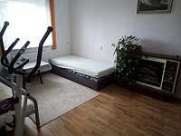 Ubytování u lesa - apartmán ubytování Dolní Orlice - 9