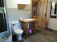 horní koupelna - pronájem chalupy Osečnice -  Proloh