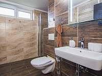 Koupelna přízemí - pronájem apartmánu Červená Voda - Mlýnický Dvůr