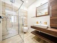 Koupelna v přízemí - pronájem chalupy Říčky v Orlických horách