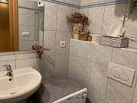 Podkrovní apartmán - přímo u sjezdovky - apartmán k pronájmu - 10 Deštné v Orlických horách