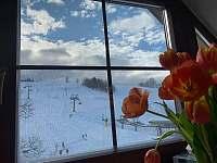 Podkrovní apartmán - přímo u sjezdovky - apartmán ubytování Deštné v Orlických horách - 2