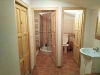 koupelna a wc - chalupa k pronájmu Bartošovice v Orlických horách - Neratov