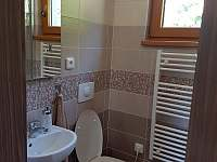 spodní koupelna 1 se sprchovým koutem - chata k pronájmu Dolní Morava