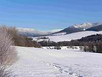 Pohoří Kralického Sněžníku - srub k pronájmu Dolní Morava