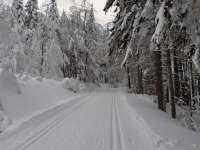 Běžkařské tratě - Knížecí cesta, Jiráskova cesta (směr Masarykova chata) - Olešnice v Orlických horách