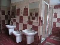 koupelna - pronájem chalupy Sedloňov v Orlických horách