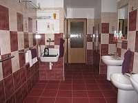 koupelna - Sedloňov v Orlických horách