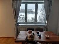 Apartmán u Kunštátského mlýna - apartmán ubytování Orlické Záhoří - 5