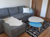 Apartmán u Kunštátského mlýna - apartmán k pronajmutí - 4 Orlické Záhoří