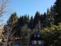 Chaloupka u lesa - chalupa ubytování Olešnice v Orlických horách - 5