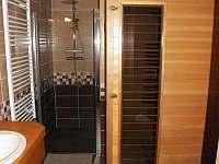 koupelna přízemí- sprchovací kout - pronájem chalupy Pěčín u Rychnova nad Kněžnou