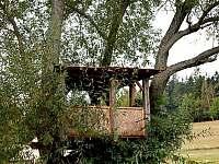 stromový domeček - pronájem chalupy Sněžné