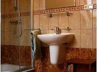 koupelna v podkroví se sprchovým koutem