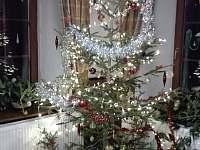 Vánoční týdenní pobyt v překrásném prostředí v Orlických horách - Rokytnice v Orlických horách