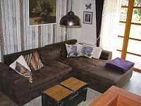 Apartmán Levandule - apartmán ubytování Říčky v Orlických horách - 9