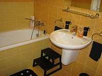 Apartmán Levandule - apartmán k pronajmutí - 11 Říčky v Orlických horách