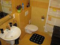 Apartmán Levandule - pronájem apartmánu - 12 Říčky v Orlických horách