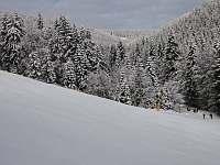 pohled z vleku - Říčky v Orlických horách