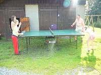 stolní tenis - chalupa k pronájmu Sedloňov