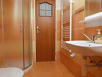 Koupelna - apartmán k pronajmutí Dolní Orlice