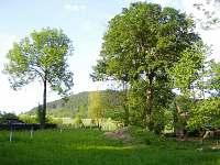 zahrada, výhled na les a rozhlednu, vpravo stodola - chalupa ubytování Červená Voda