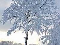 Horní Studénky v zimě