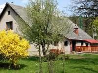 ubytování Skiareál Kunčice u Letohradu - Umbule na chalupě k pronajmutí - Těchonín