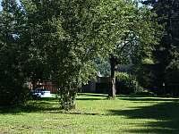 Zahrada - chalupa ubytování Těchonín
