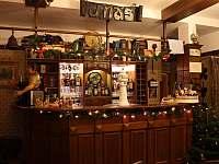 Bar s profi pípou - chalupa k pronájmu Bartošovice v Orlických horách