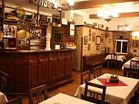 pohled na interiér restaurace s barem - chalupa k pronájmu Bartošovice v Orlických horách