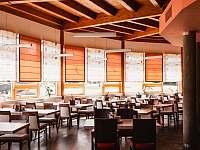Restaurace přilehlého hotelu - apartmán k pronajmutí Říčky v Orlických horách