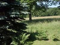 okolí chaty